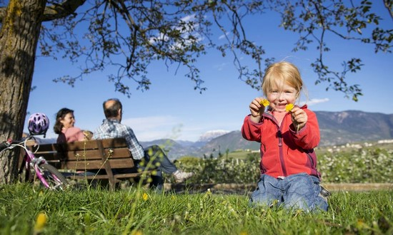 SPECTRUM CHALLENGES ARE A FAMILY AFFAIR How To Help The Whole Family Using Plant Medicine