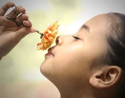 On The Spectrum – Using Flower Remedies For The Symptoms And Not The Diagnosis